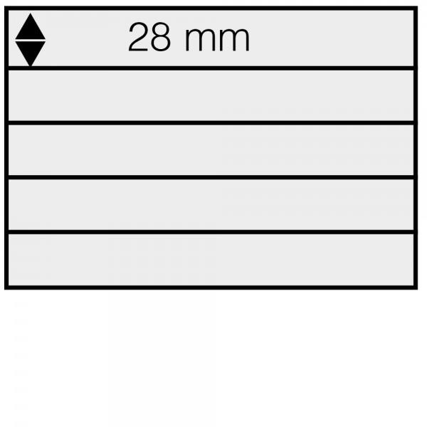 Schede Din A5 in cartoncino con 5 listelli (100 pezzi)