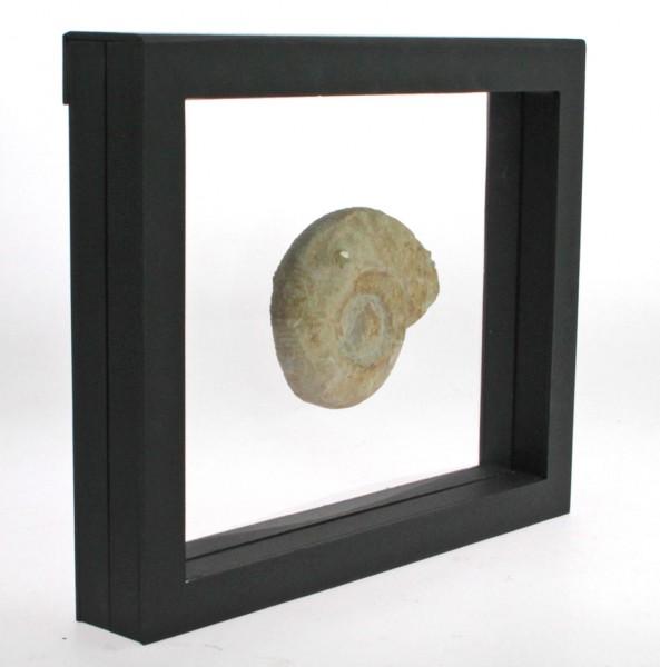 Cornice sospeso 3D 270 x 225 mm